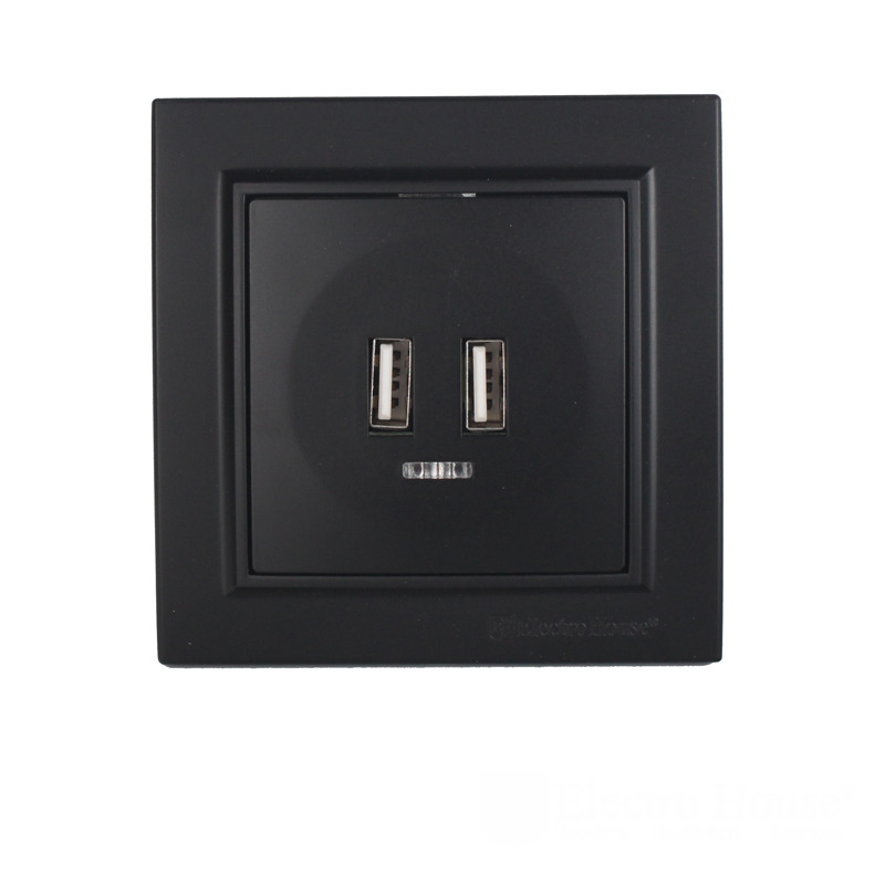 Розетка USB (2 порта)графит Enzo ЕН-2188-PG EH-5320-PG